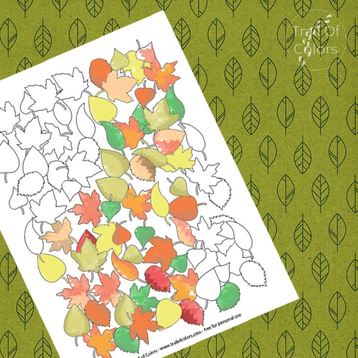 Fall Leaves Coloring Page for Adults
