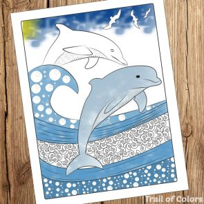 Dolphin Coloring Page for Grown ups