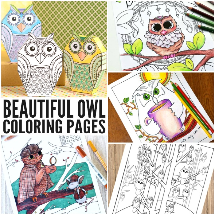 Beautiful Owl Coloring Pages