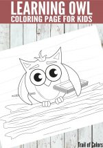 Owl Coloring Page for Kids