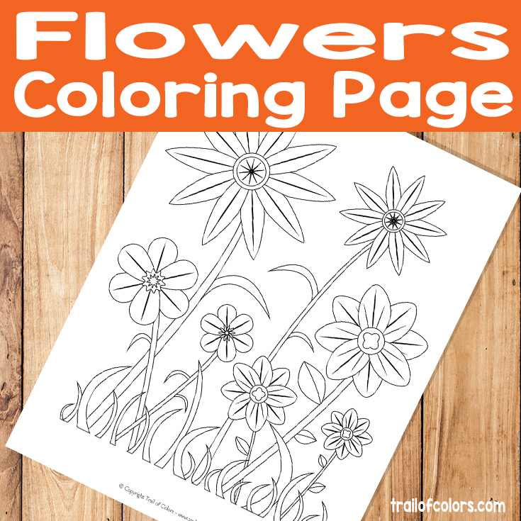 Simple Flower Coloring Page for Kids - Trail Of Colors