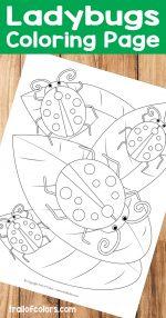 Ladybugs Coloring Page – free printable for kids