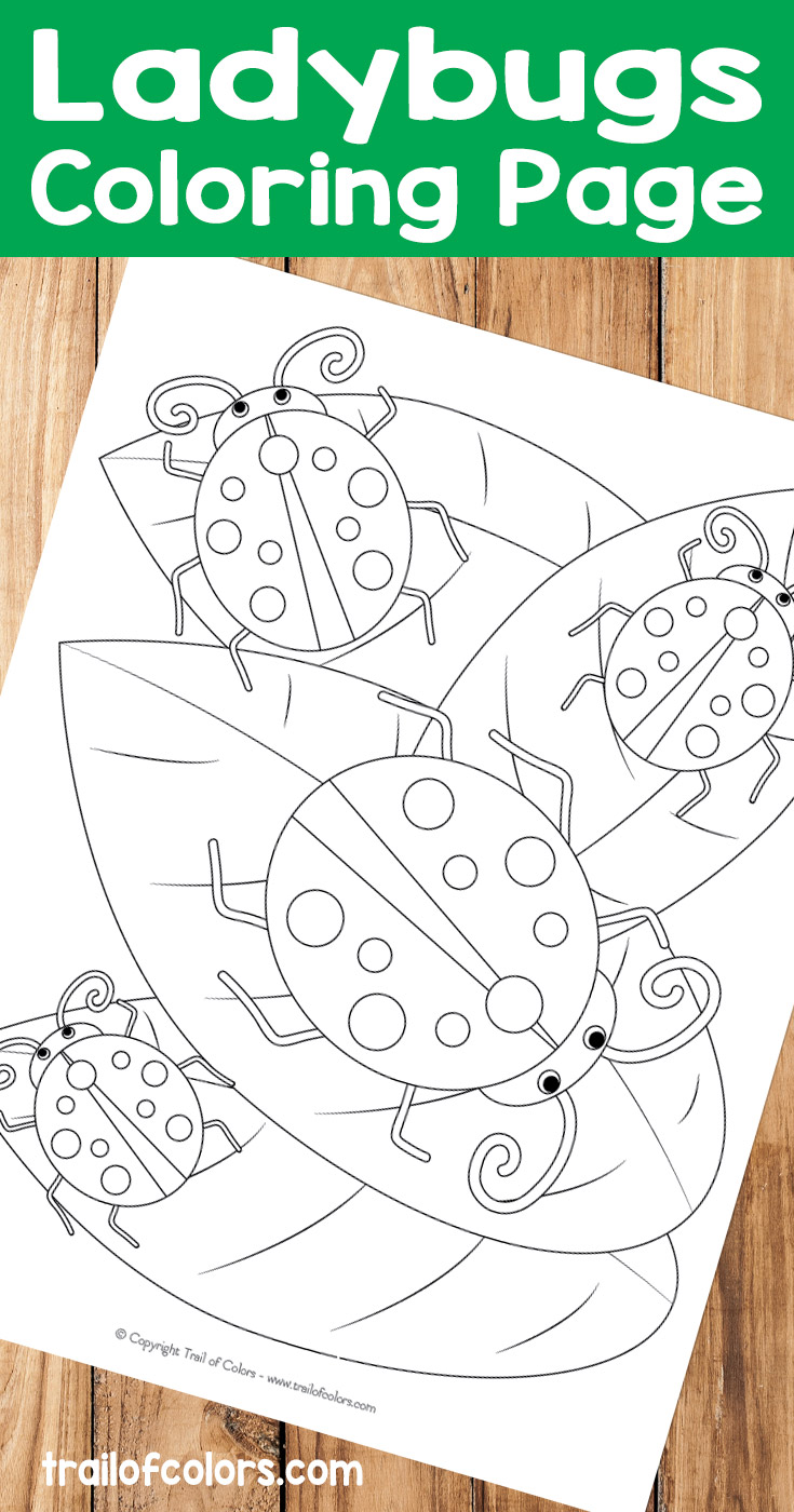 Coloring pages of ladybugs for kids - Free Printable Ladybugs Coloring Page
