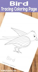 Printable Bird Tracing Coloring Page