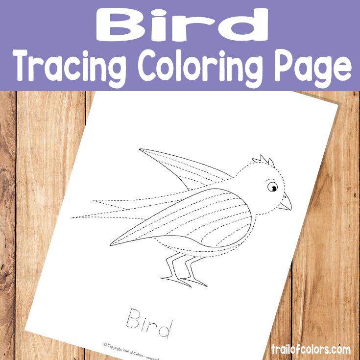 Printable Bird Tracing Coloring Page for Kids
