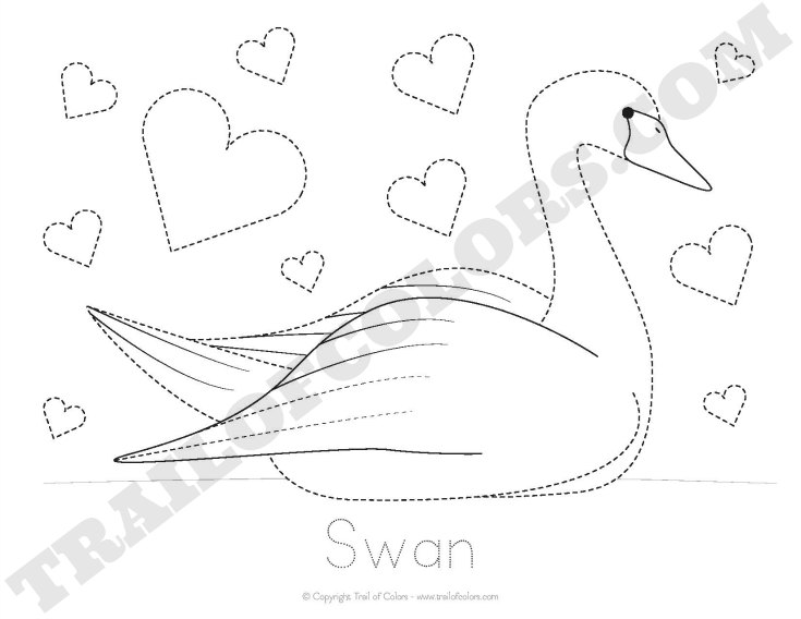 Swan Tracing Coloring Page - Free Printable