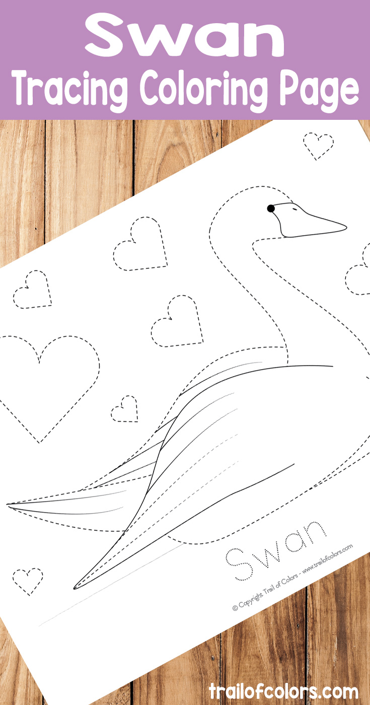 Free Printable Swan Tracing Coloring Page
