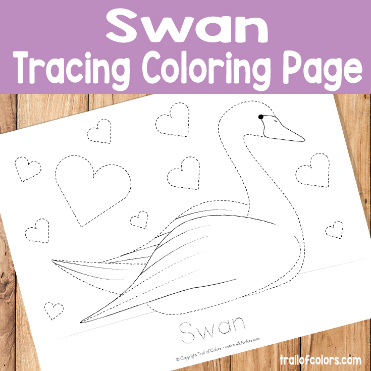 Swan Tracing Coloring Page