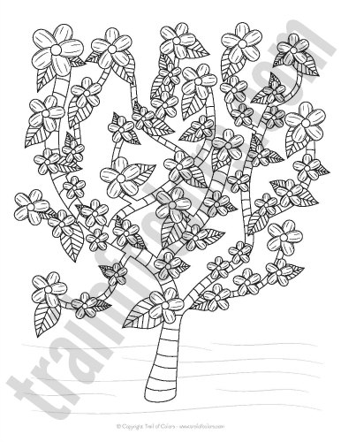 Cherry Tree Coloring Page for Kids and Adults
