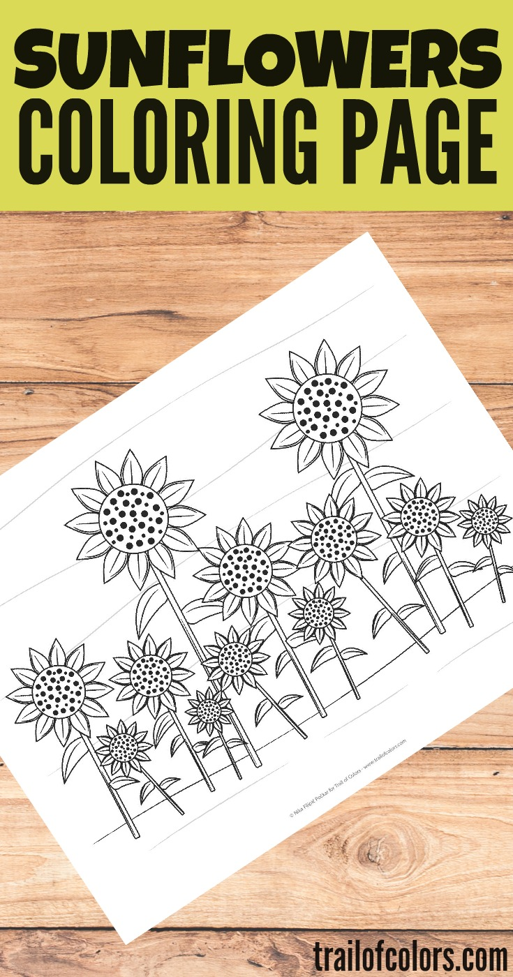 Lovely Sunflowers Coloring Page - free printable - Trail Of Colors