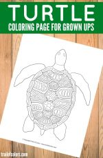 Turtle Coloring Page for Grown Ups