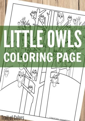 Cute Owls Coloring Page for Grown Ups and Kids