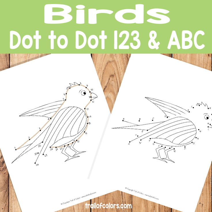 Dot to Dot Bird Coloring Pages