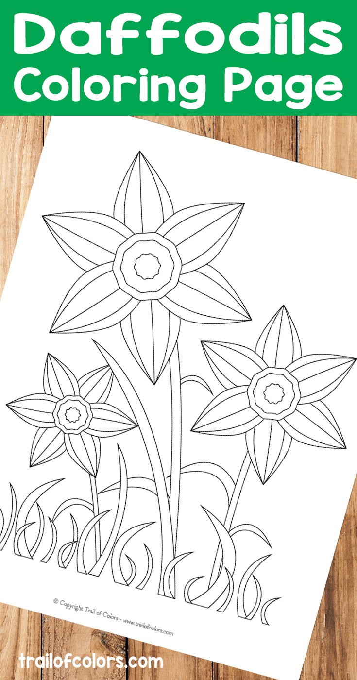 Lovely Daffodils Coloring Page for Kids