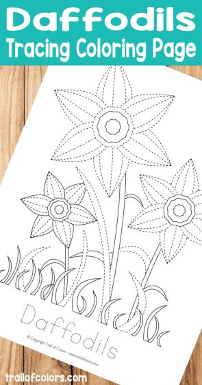 Daffodils Tracing Coloring Page for Kids