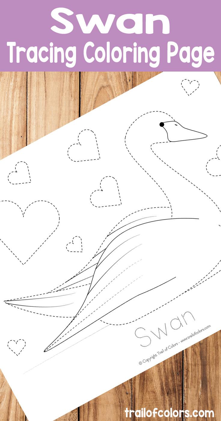 Free Printable Swan Tracing Coloring Page