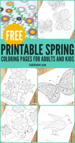 Spring Coloring Pages for Grown Ups and Kids