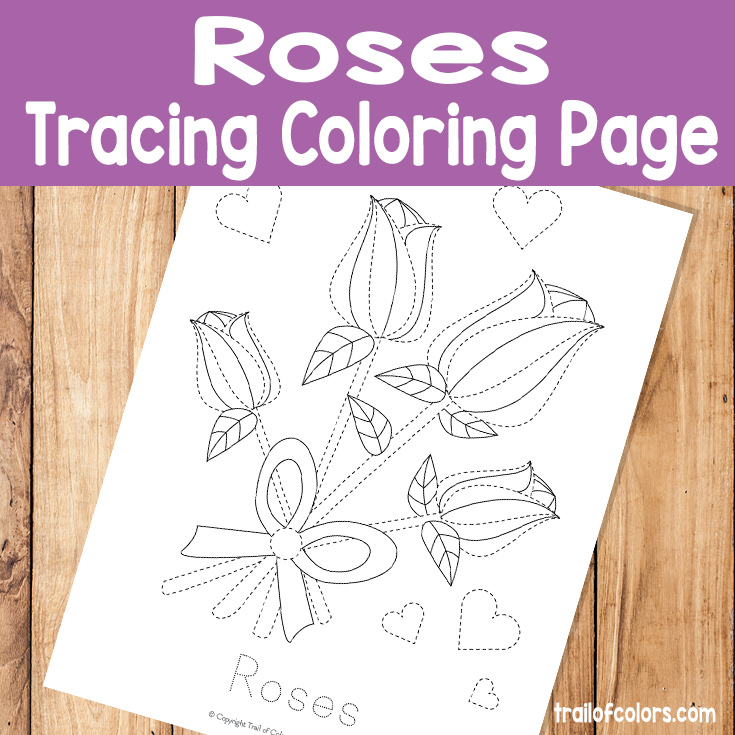 Roses Tracing Coloring Page for Little Ones