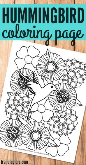 Free Printable Hummingbird Coloring Page for Adults