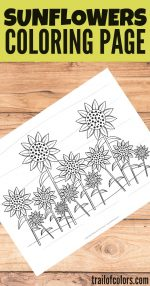 Lovely Sunflowers Coloring Page – free printable