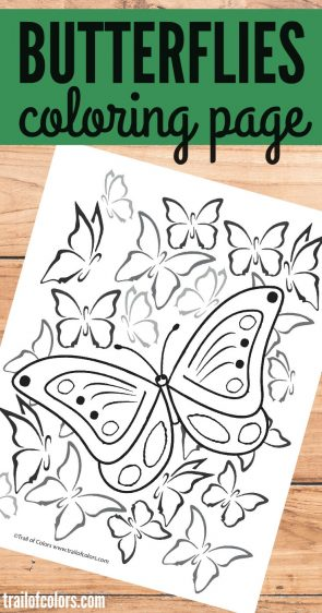 Lovely Butterfly Coloring Page for Grown Ups