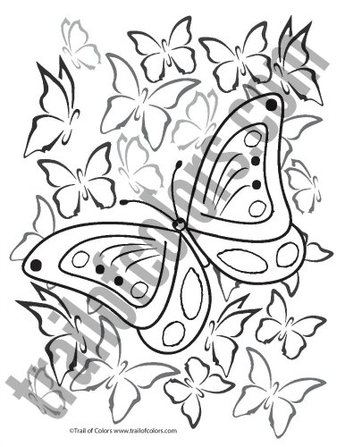 Printable Butterfly Coloring Page for Grown Ups