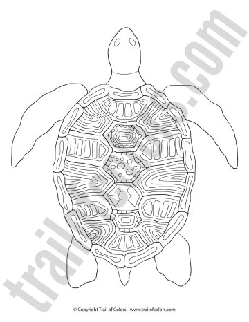 Turtle Coloring Page For Grown Ups Trail Of Colors